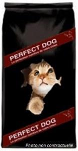 PERFECT DOG CHAT PREMIUM